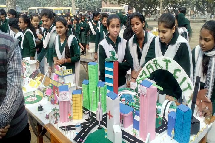 Acharya Narendra Deo Public School-Science exibition1