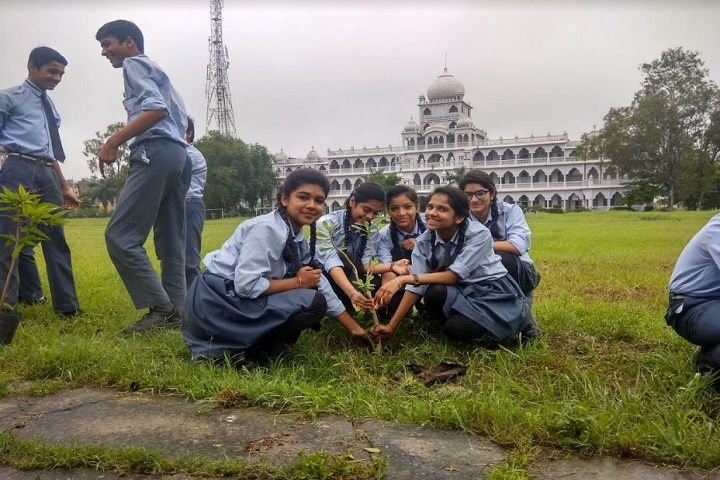 Guru Harkrishan Public School-plantation