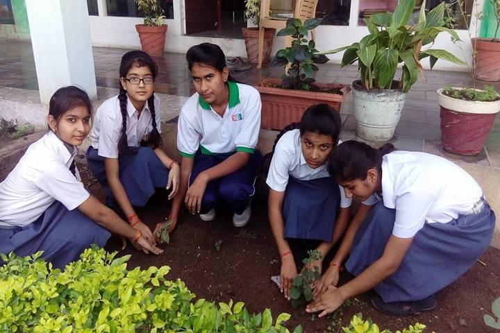Hind Junior College-Tree Plantation