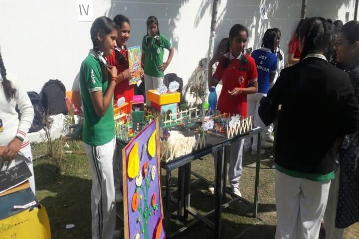 Joy & Champion Public School-Science Exhibition