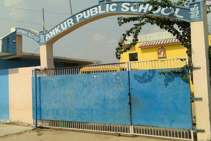 Ankur Public School-School