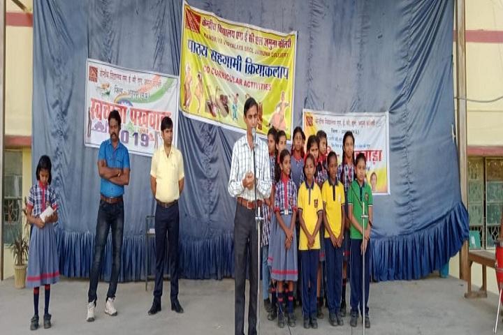 Kendriya Vidyalaya-Activity Day
