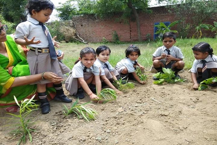 Kg Children School-Tree Plantation