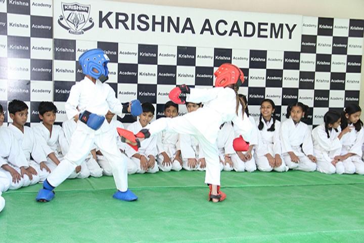 Krishna Academy-Karate