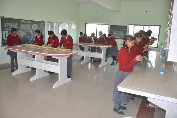 Narmada Valley International School-Laboratory physics