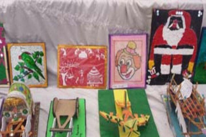 Peoples Public School-Exhibition