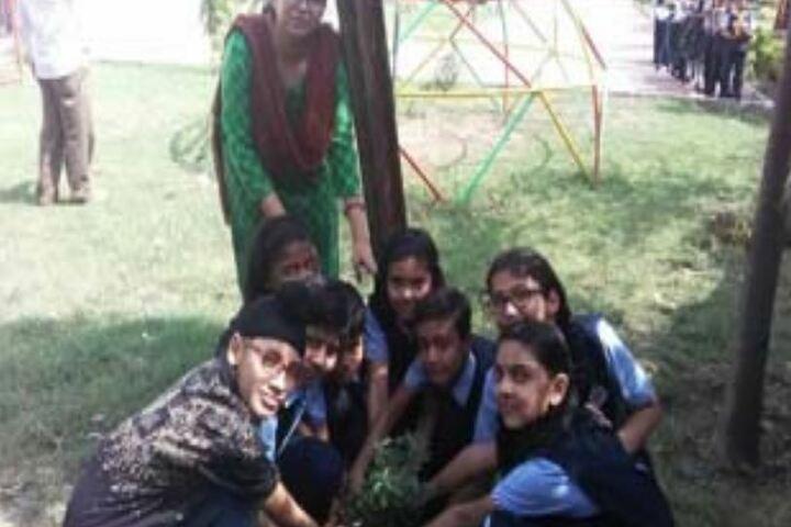 Peoples Public School-Tree-Plantation