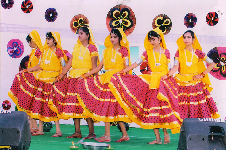 Pragyan English Medium Co Educational School-Cultural Event