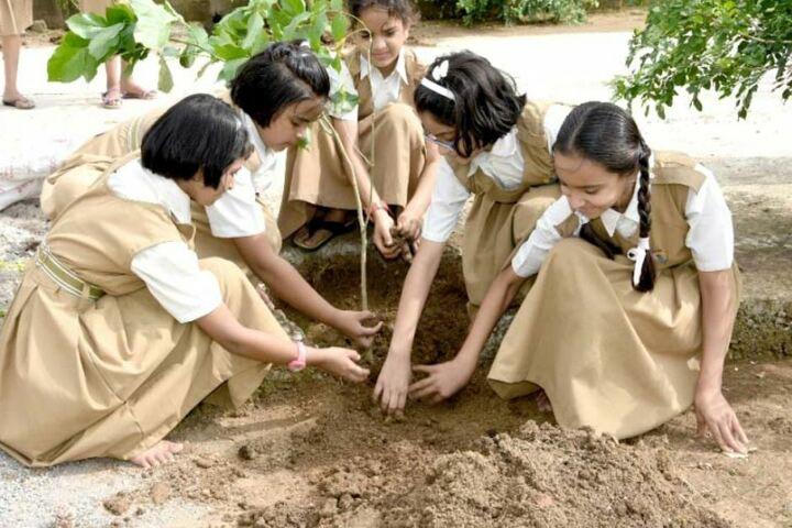 Pratibhasthali Gyanoday Vidiyapeeth-Tree-Plantation
