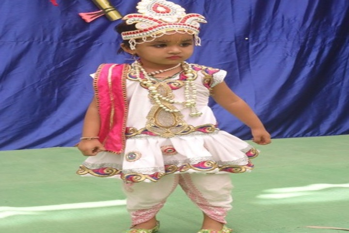 Prof Santosh Mittal Higher Secondary School-Fancy Dress