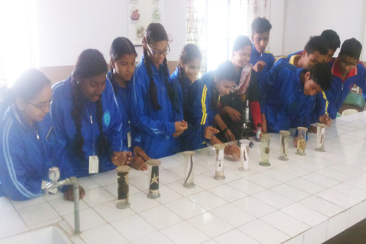 Queen Marys Senior Secondary School-Biology-Lab