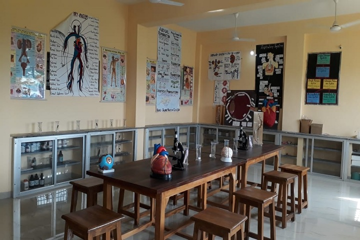 Rai Saheb Bhanwar Singh Public School-Biology-Lab