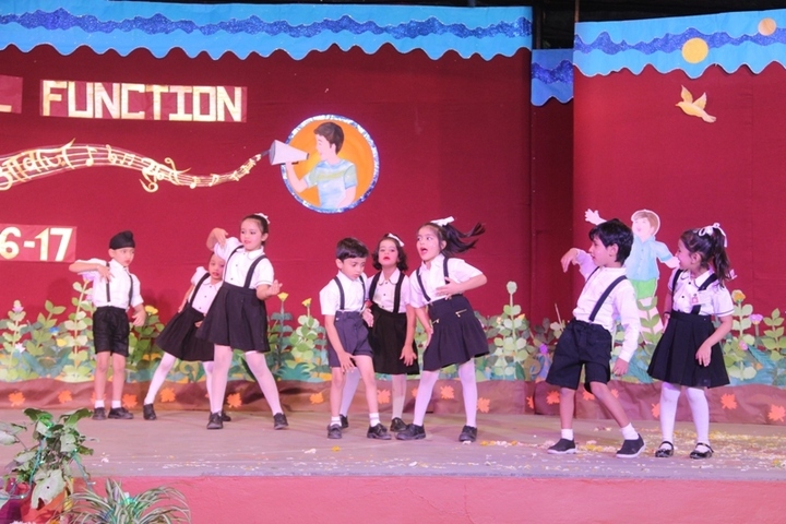 Red Rose Convent Academy-Activity