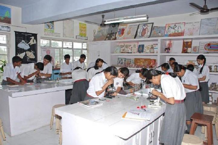 Bihar Public School-Chemistry-Lab