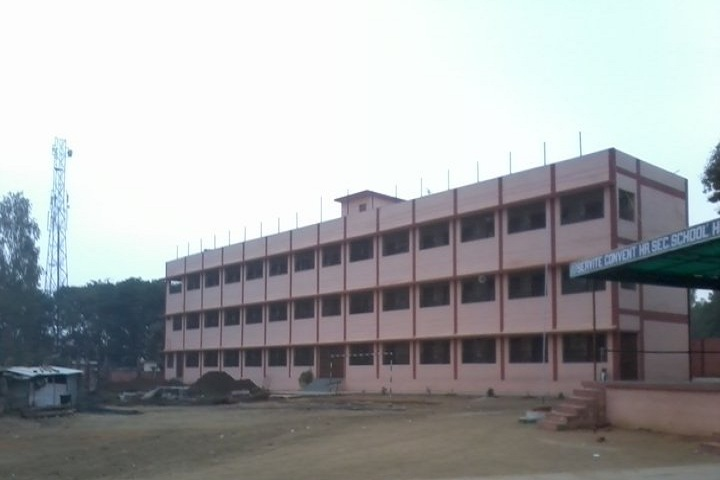 Servite Convent Higher Secondary School-Campus