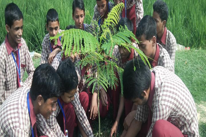 Buddha Mission School Bihar-World Environment Day