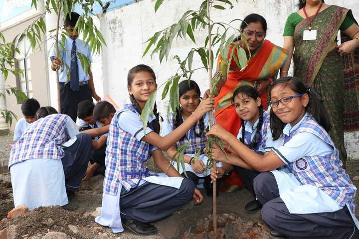 St Xaviers Senior Secondary School-Nature Club Activities