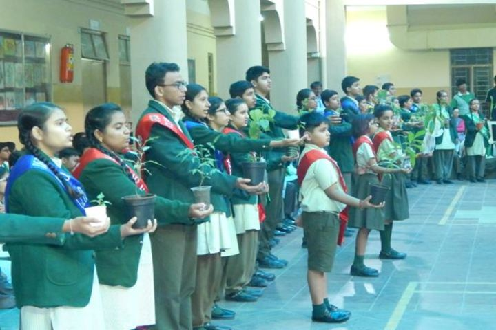 The South Indian Cultural Association Senior Secondary School-Eco Day