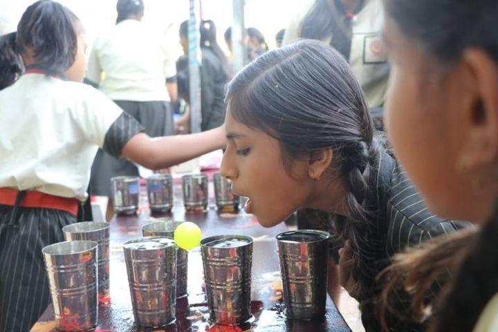 The Vidhyanjali International School-Activity