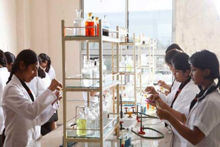 The Vidhyanjali International School-Lab