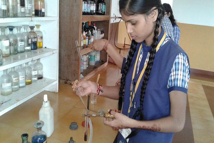 Vardhaman Public School - Chemistry