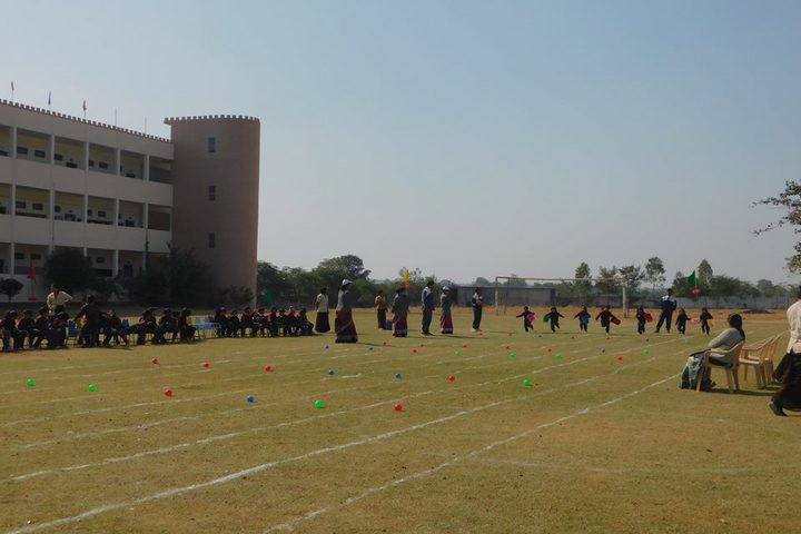 Vidya Bhavan Public School-Play Ground