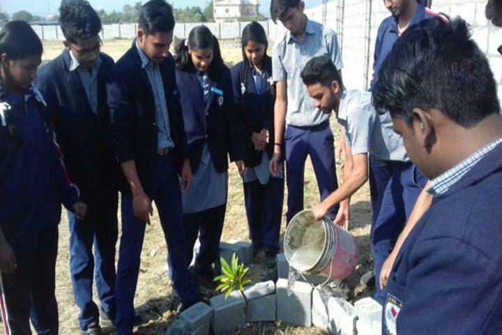 Vindhyachal Academy-Plantation