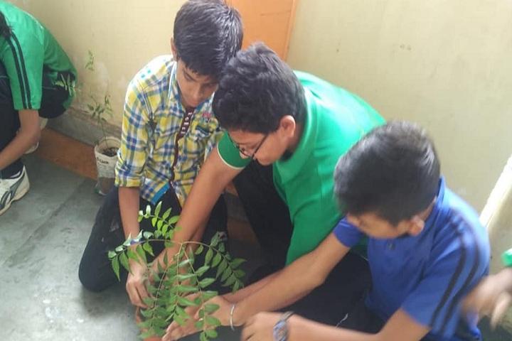 Adarsh Sanskar Vidyalaya-Others plantation