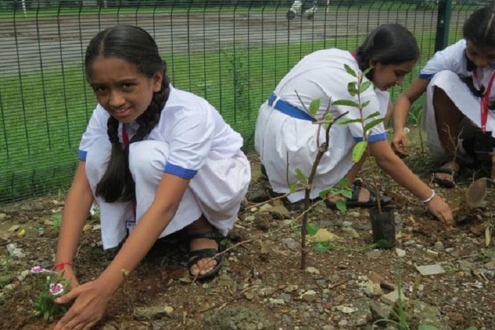Amrita Vidyalayam-Others plantation