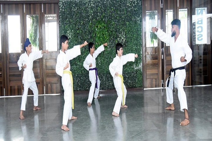 ASP Public School-Karate