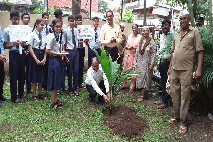 Bharati Vidyapeeth English Medium School-Tree Plantation