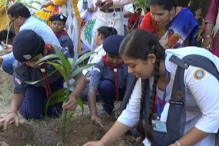 Christ Church Diocesan School-Tree Plantation