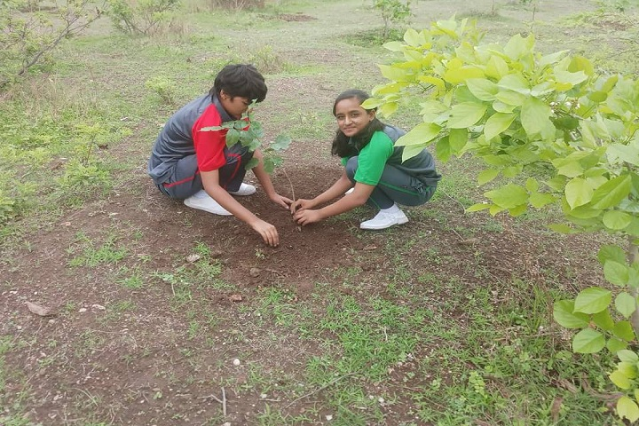 Deogiri Global Academy-Tree Plantation