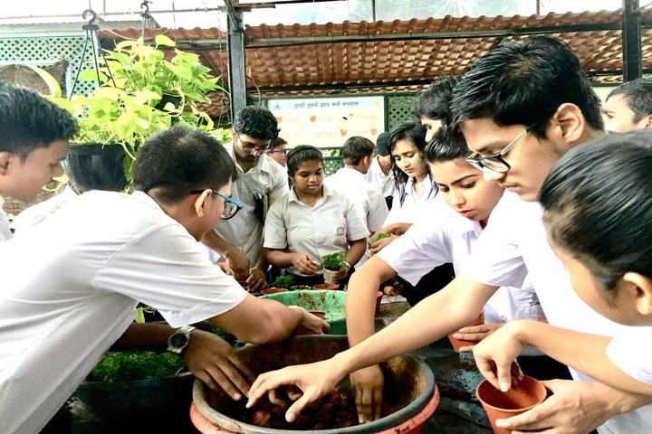 Harmony International School-Plantation