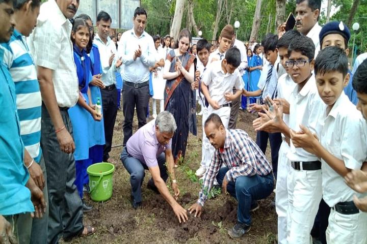 Jawahar Navodaya Vidyalaya-Plantation Activity