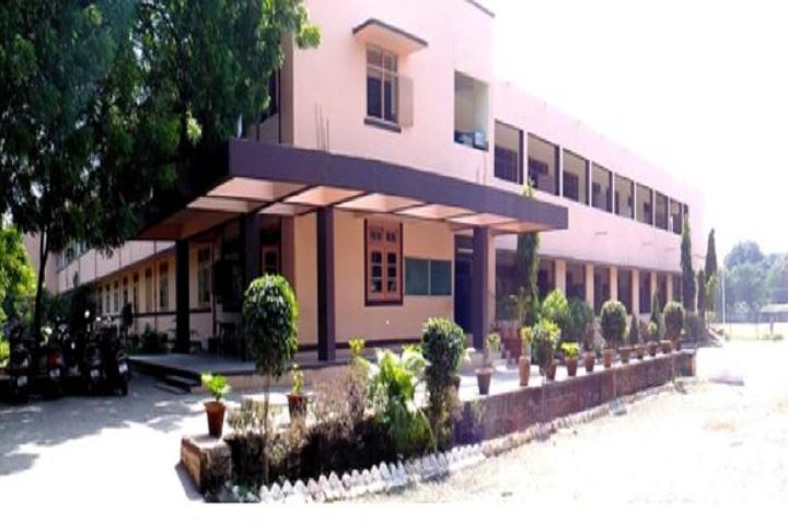 Kurveys New Model Public School-Campus view 1