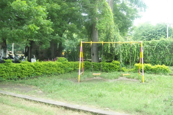 Kurveys New Model Public School-Playground