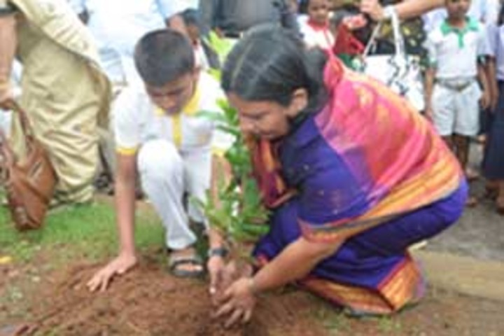 Navyug English Medium School-Tree Plantation
