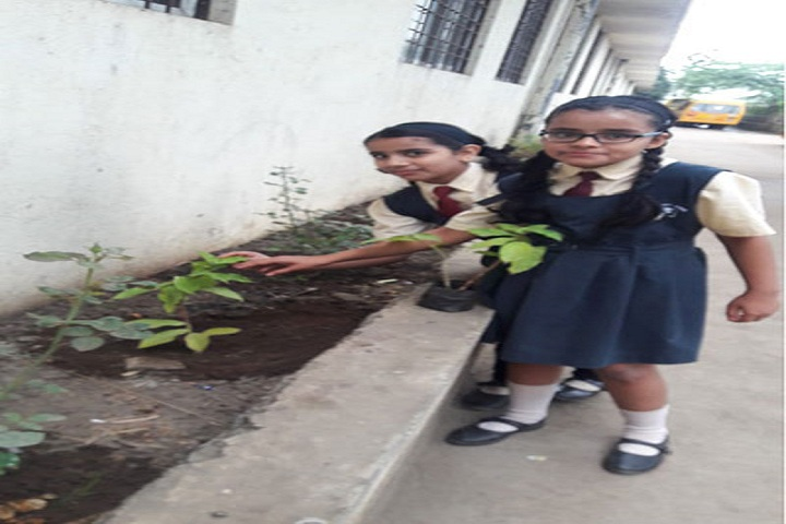 Sinhgad City School-Plantation
