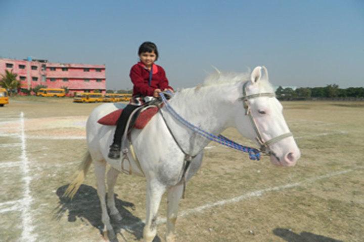 Swami Awadheshanand Public School-Horse Riding