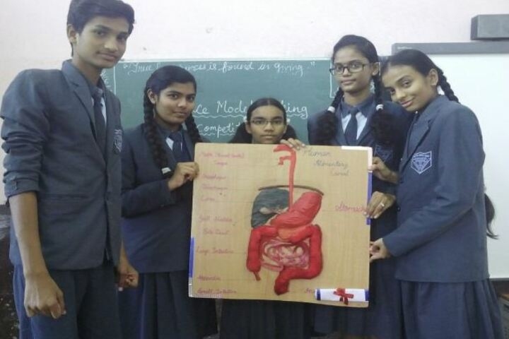 Vidya Niketan School-Biology Project