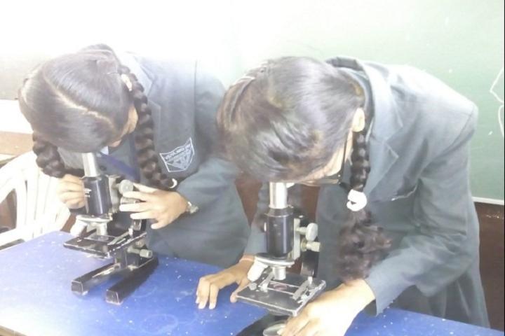 Vidya Niketan School-Science Lab Experiment