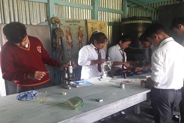 Dav Public School-Laboratory biology