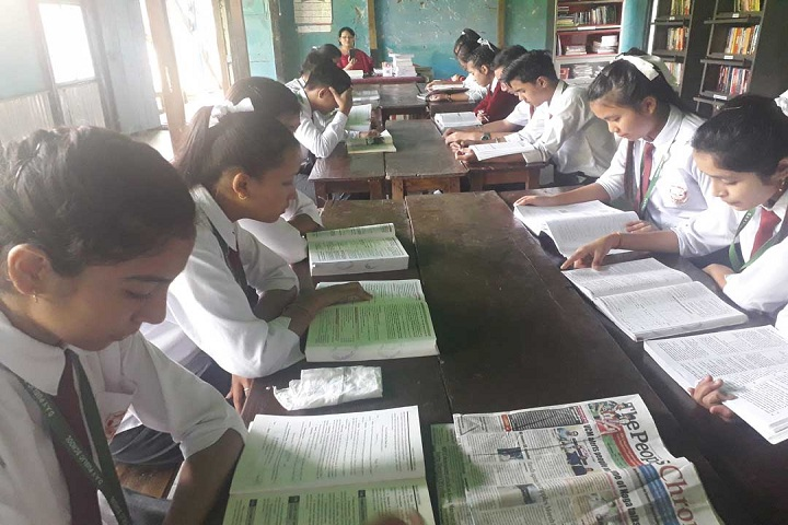 Dav Public School-Library with reading room