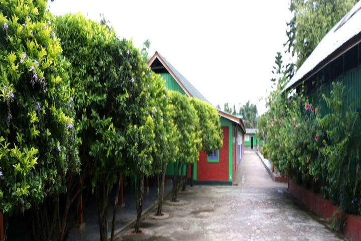 Grace Cottage Cultural and Educational Development Foundation-Corridor