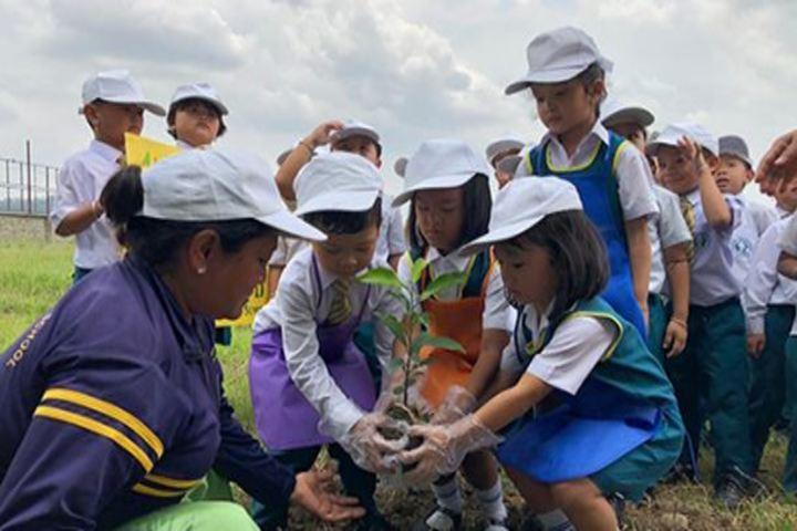 Maria Montessori School-Green day