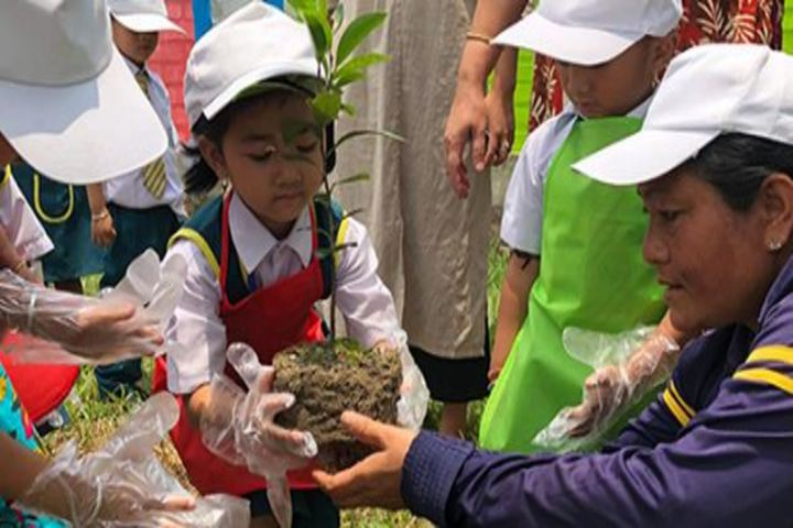 Maria Montessori School-Tree plantation Day