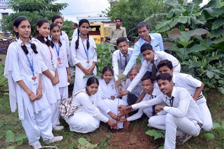 Divine Light Public School-Plantation