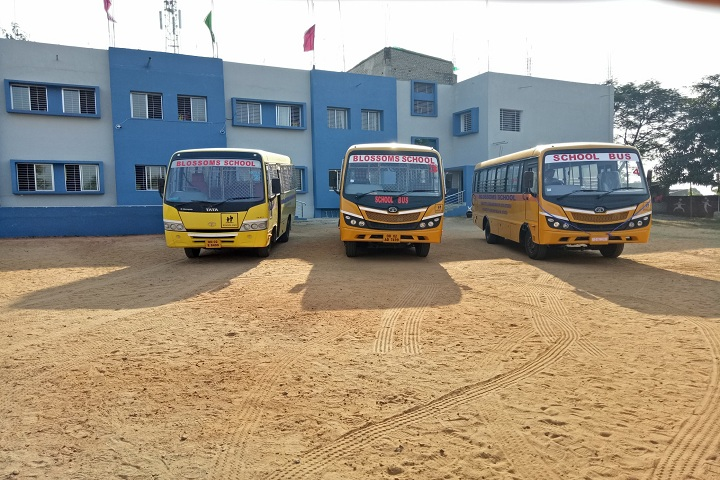 Blossoms School-Transport