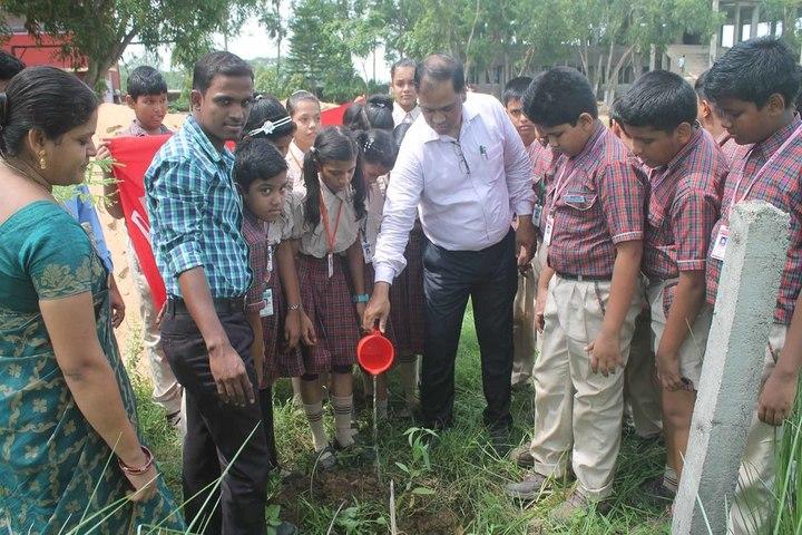 DAV Public School - Tree planting